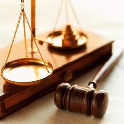 Lawyer 31