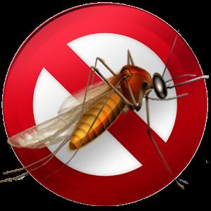 Mosquito 28
